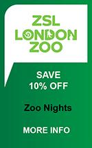London Zoo Nights